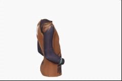 Long_Sleeve_brown